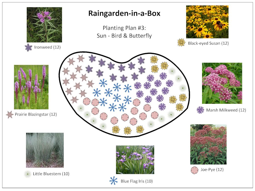 Raingarden in a box designs prior lake spring lake for Butterfly garden plans designs