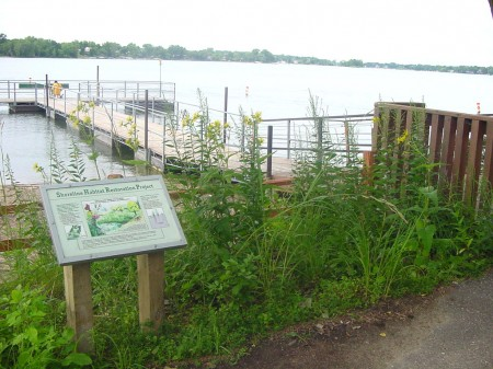 An example of shoreline restoration near Sand Point Beach on Prior Lake.