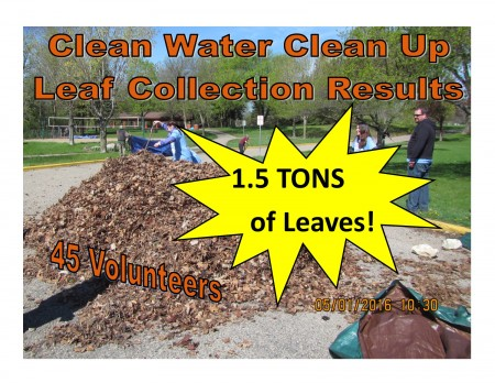 Clean Water Clean Up_Spring 2016 Results