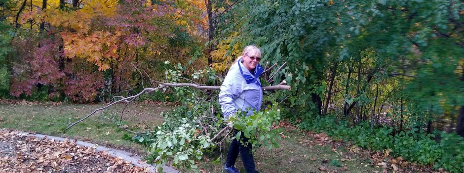 Jodi See with buckthorn_Fall 2019 clean-up
