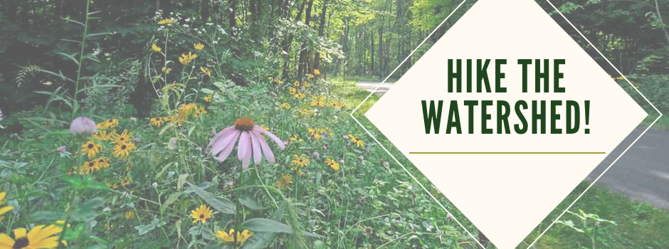 Hike the Watershed banner graphic_native plants