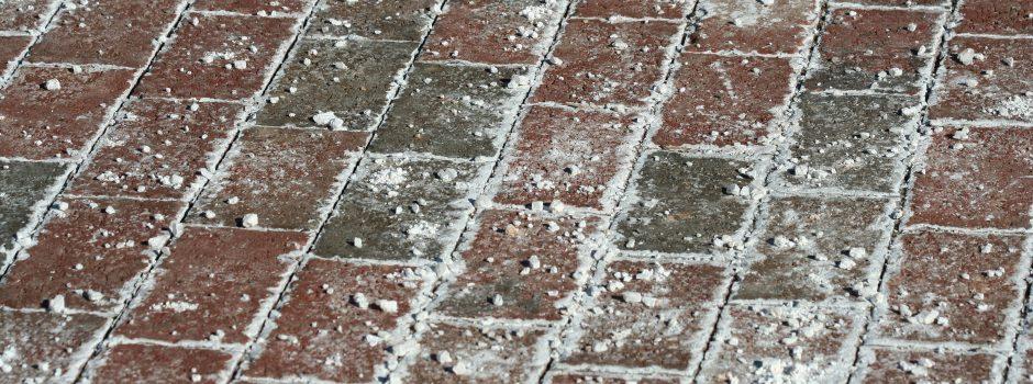 bricks extra salt